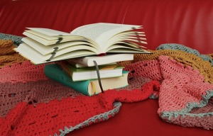 opened books on a blanket